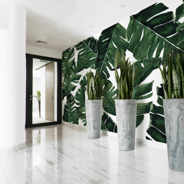 palm leave wallpaper
