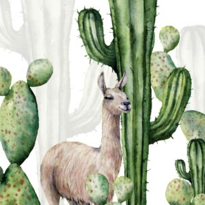 alpaca wallpaper