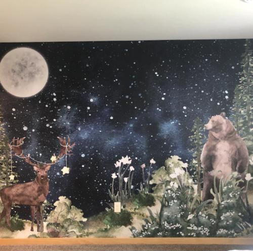 Bear photo review