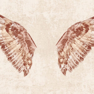 wings wallpaper