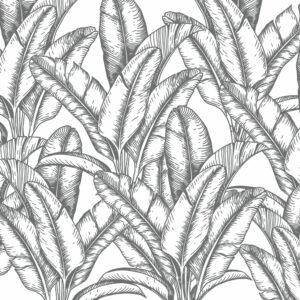 palms wallpaper