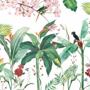 The bird garden
