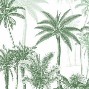 The invitation of the jungle